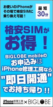 BIGLOBEの格安SIM/スマホ